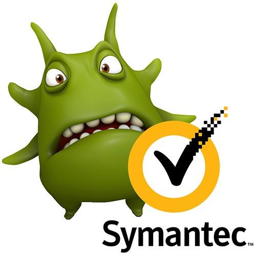 symantec-bug